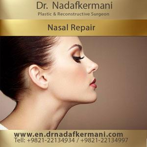 nasal repair